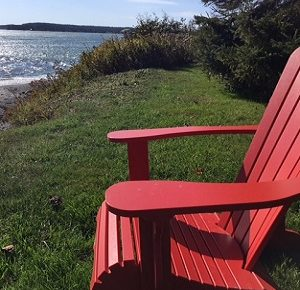 Reflections from the Red Chair